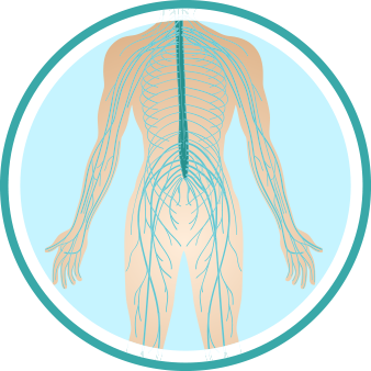 peripheral-nerves-disorder